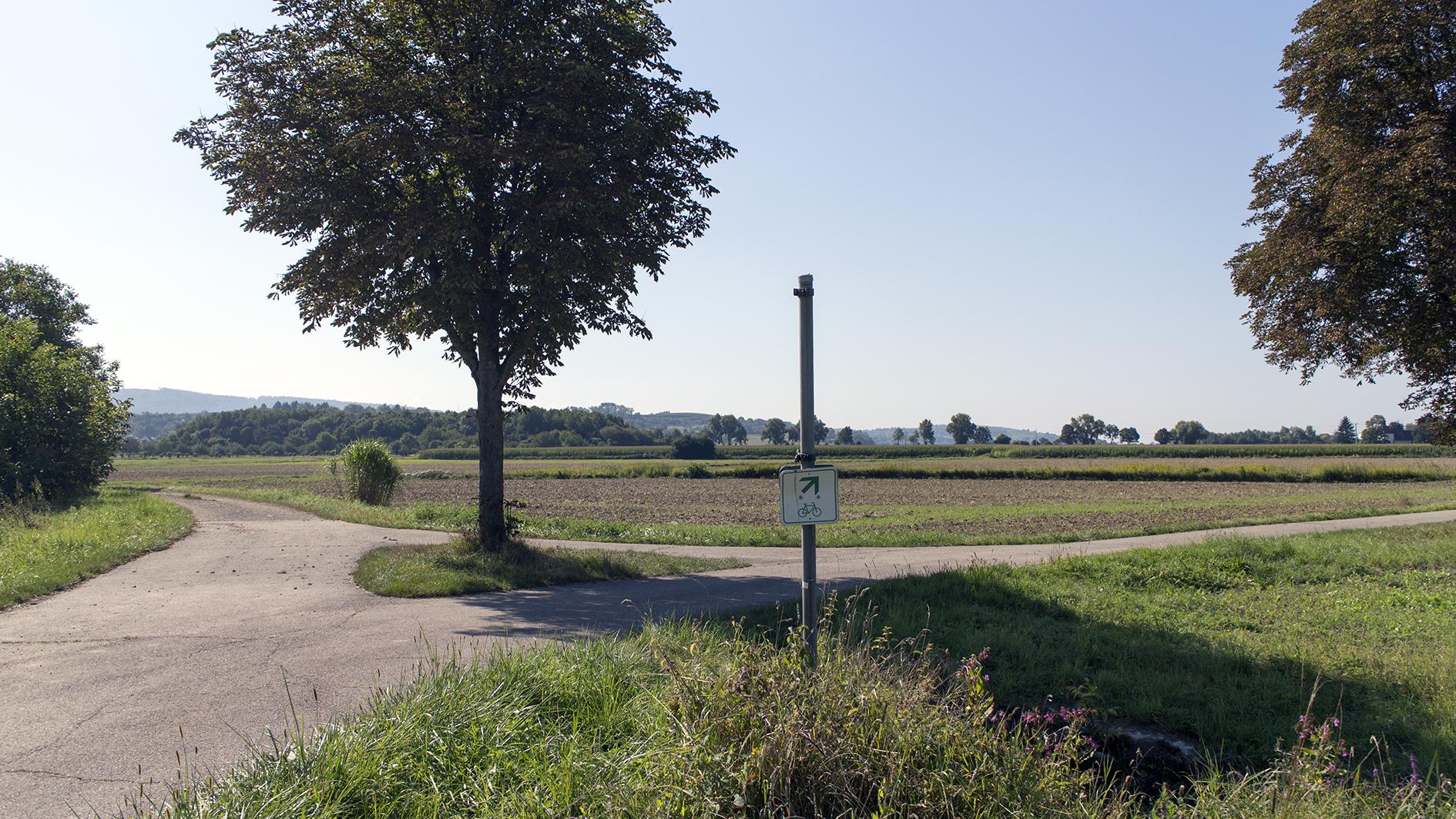 Das Bild zeigt eine Weggabelung in der Nähe der Leutkirche bei Oberschopfheim.